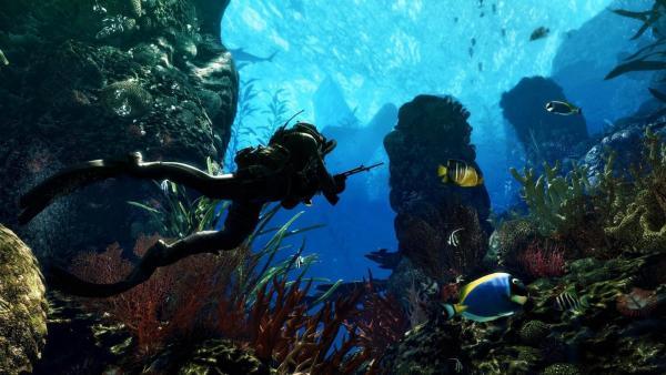 Nature___Sea_Underwater_hunting_041636_.jpg