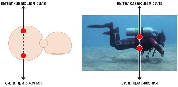 neutral-buoyancy-diving-31.jpg