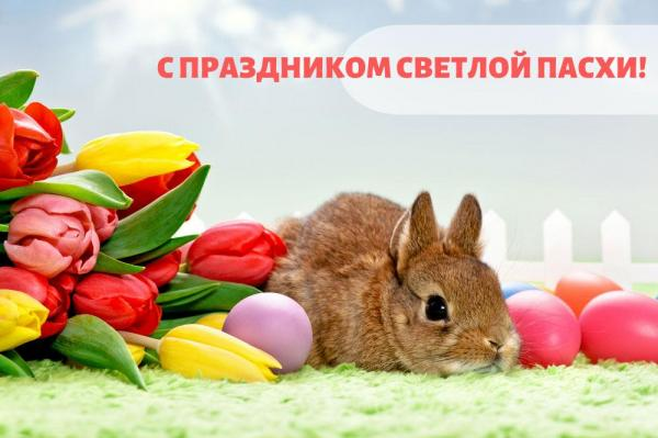 Пасха_зайчик_ВК.jpg